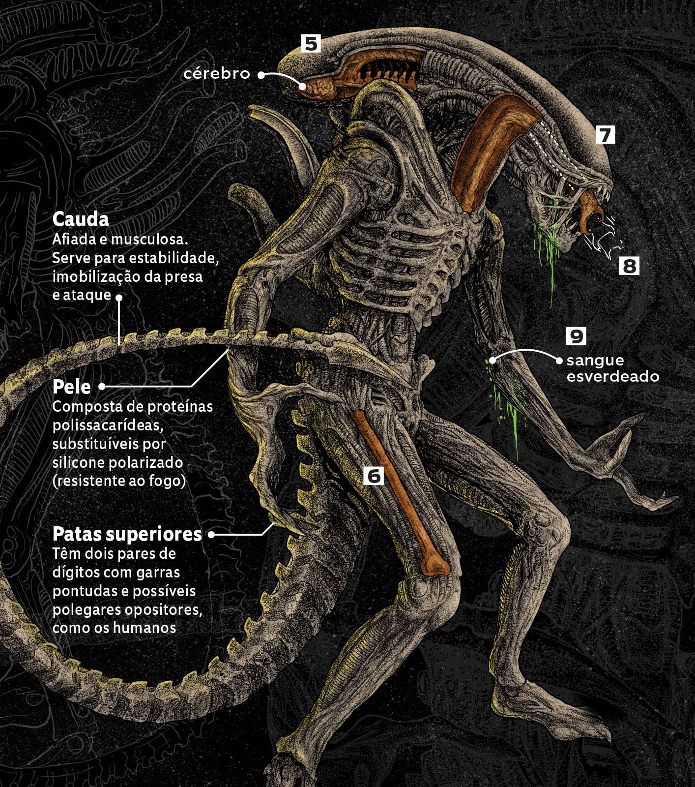 Desenho do Alien